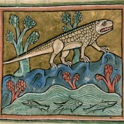 Крокодил. Рочестерский бестиарий (Royal 12 F XIII, fol. 24r.)