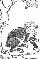 Пэн-хоу или Хоко. Рисунок Тэрадзимы Рёана, 1712 год