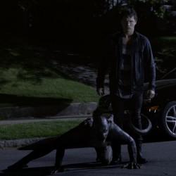 "Сериал ""Волчонок"" (Teen Wolf). Сезон 2, эпизод 9"