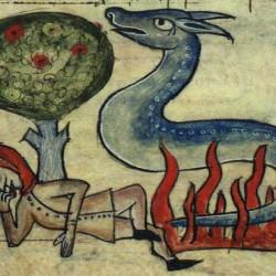 Саламандра. Английский бестиарий XV века (Бестиарий Энн Уолш)