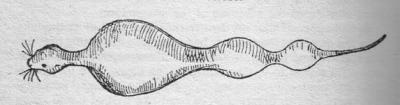 Скримсл. Рисунок Сабина Бэринг-Гулда (1860)