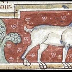 Левкрота. Рукопись Британской библиотеки (MS Sloane 3544, fol. 10v.)