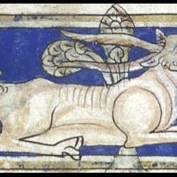 Парандр. Рукопись Британской библиотеки (MS Sloane 3544, fol. 11v.)