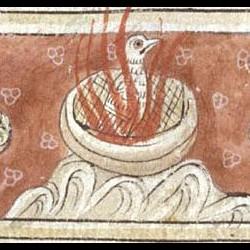 Феникс. Рукопись Британской библиотеки (MS Sloane 3544, fol. 26v.)