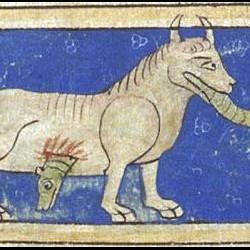 Гидрус. Рукопись Британской библиотеки (MS Sloane 3544, fol. 38r.)