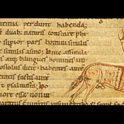 Онокентавр. Рукопись Британской библиотеки (MS Stowe 1076, fol. 1v.)