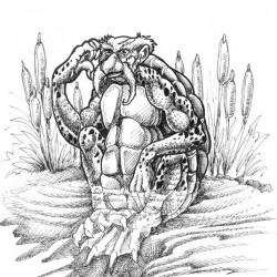 Каппа. Рисунок Ракаэля Майо