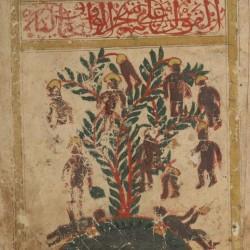Дерево Вак-Вак. Рукопись Бодлеянской библиотеки (MS. Arab. c. 90, fol. 27r.)