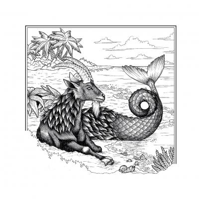 Козерог. Иллюстрация Элизы Бизи