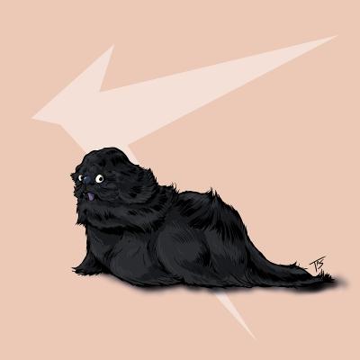 Кэукэгэн. Иллюстрация Трэйси Шепарда