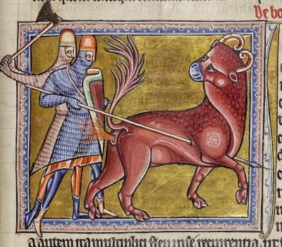 Боканон из Абердинского бестиария (MS24; Folio 12r), XII век