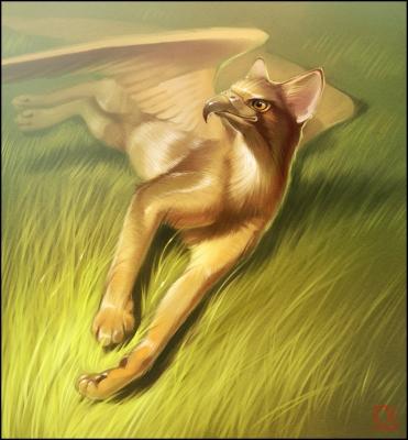 Абиссинский грифон. Иллюстрация Александры Хитровой (GaudiBuendia)