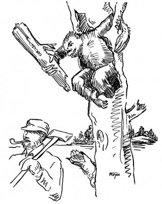 """Агропельтер. Иллюстрация Маргарет Рэмси Трайон из книги """"Устрашающие твари"""""""