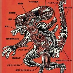 Анатомия чужого. Иллюстрация Брэда МакГинти