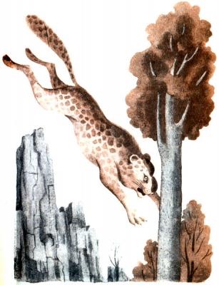 Кошка-леталка. Иллюстрация Сергея Алимова