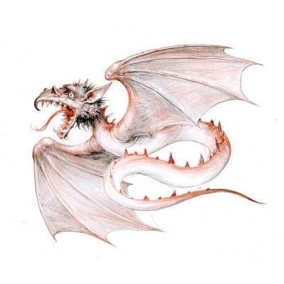 Амфиптерий (Amfipterus). Иллюстрация Дениса Гордеева к бестиарию Сапковского