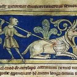 Анталоп-гидроп. Рукопись Британской библиотеки (MS Sloane 3544, fol. 4r.)