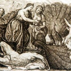 """Гера, собирающая глаза Аргуса"". Рисунок 17 века"