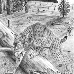 Арысь-поле. Рисунок Валентина Дельвесто