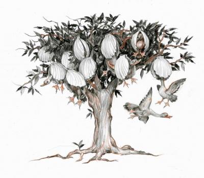 Берникловое дерево. Иллюстрация Дениса Гордеева к бестиарию Сапковского