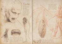 Канима. Разворот из бестиария семьи Арджентов. Иллюстрации Суонна Смита (2014)