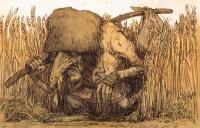 Белун. Рисунок Павла Зыха (Paweł Zych)