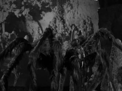 """Гигантский лунный паук. Кадр из фильма """"Женщины-кошки с Луны"""" (1953)"""