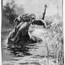 "Буньип. Иллюстрация из ""Illustrated Australian news"" (1890)"