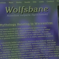 "Кадр 2 из сериала ""Волчонок"" (Teen Wolf). 1 сезон, 1 серия"