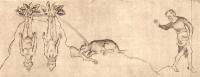 Выкопка мандрагор. Иллюстрация из Псалтири Королевы Мэри