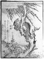 Фури. Иллюстрация Ториямы Сэкиена