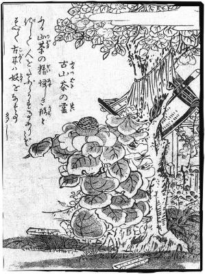 Фуруцубаки-но рэй. Иллюстрация Ториямы Сэкиэна