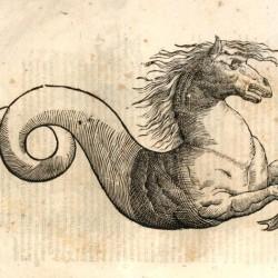 """Гиппокамп. Гравюра из книги Улисса Альдрованди """"История чудовищ"""""""