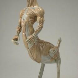 Гусиный кентавроид. Анатомическая скульптура Масао Киношиты