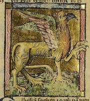 Грифон. Рисунок из бестиария Национальной Нидерландской библиотеки