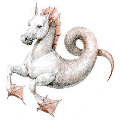 Гиппокамп (Hippocampus). Иллюстрация Дениса Гордеева к бестиарию Сапковского