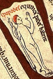 Иопод с Херефордской карты