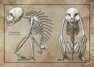 """Скелет чупакабры от Брайана Ричардсона, """"Myhtic Articulations"""""""