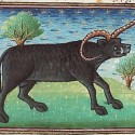 Эал из рукописи Национальной Нидерландской библиотеки