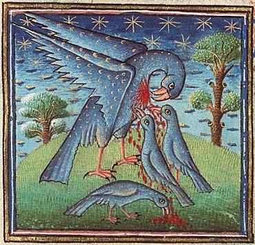 Пеликан из рукописи Национальной Нидерландской библиотеки (Hague, MMW, 10 B 25, Folio 32r)
