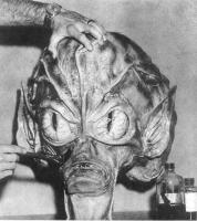 """Голова монстрика из фильма """"Вторжение людей с летающих тарелок"""" в процессе создания"""