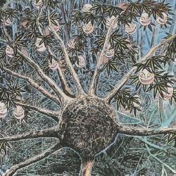 Дерево дзиммэндзю в интерпретации Шигеру Мизуки