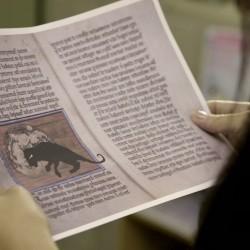 """Статья канимы в бестиарии. Сезон 2, эпизод 5. Сериал """"Волчонок"""" (Teen Wolf)"""