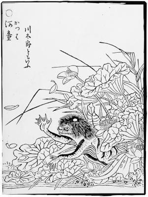 Каппа. Иллюстрация Ториямы Сэкиэна