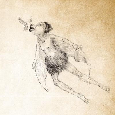 Курангаи Туку. Иллюстрация Кристофера Гюстафссона