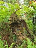 Лесной дух. Скульптура Бруно Торфса