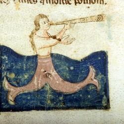 Сирена, играющая на трубе. Рукопись Моргановской библиотеки Manuscript. M.459, fol.8r