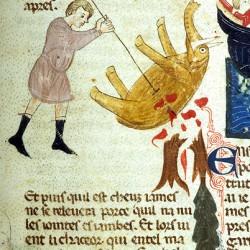 Слон (Рукопись Моргановской библиотеки Manuscript. M.459, fol.26r)