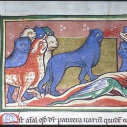 Пантера (Рукопись Моргановской библиотеки в Нью-Йорке Manuscript. M.81, fol. 21r.)