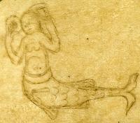 Сирена (Рукопись Моргановской библиотеки MS. M. 0814, fol. 61v.)